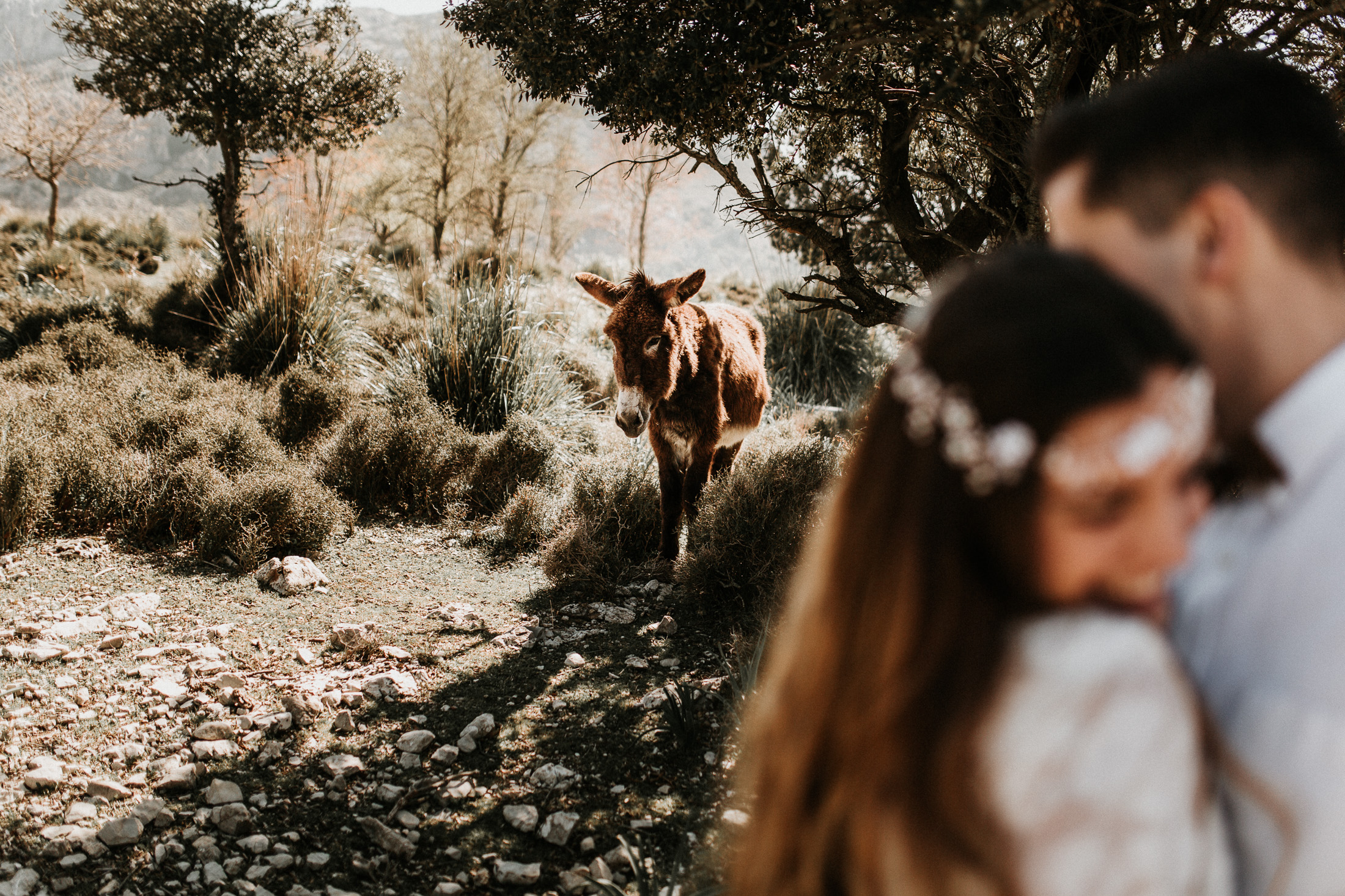 Hochzeitsfotograf Mallorca AinaXavi_44