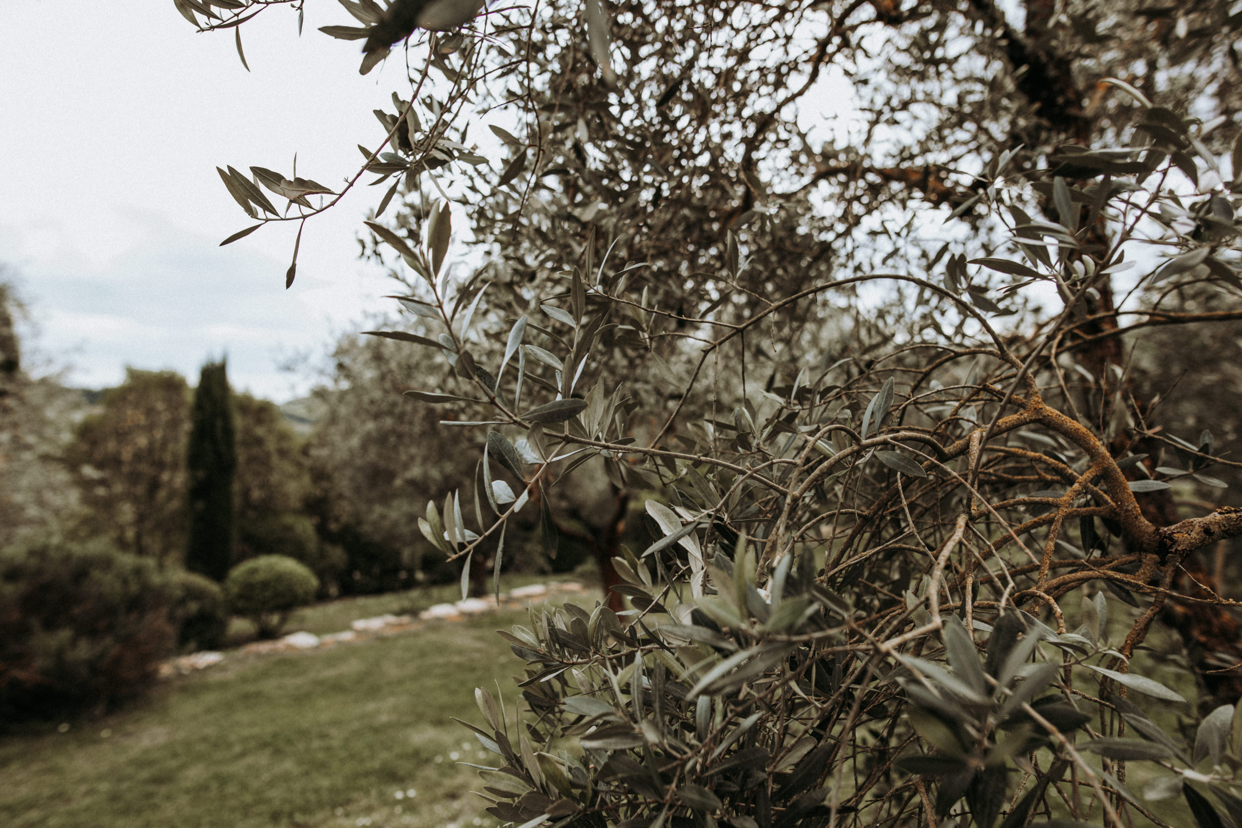 Weddingphotographer_Tuscany_Elopement_d2_171